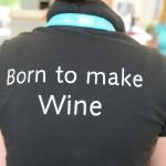 Statement beim Ball des Weines 2012